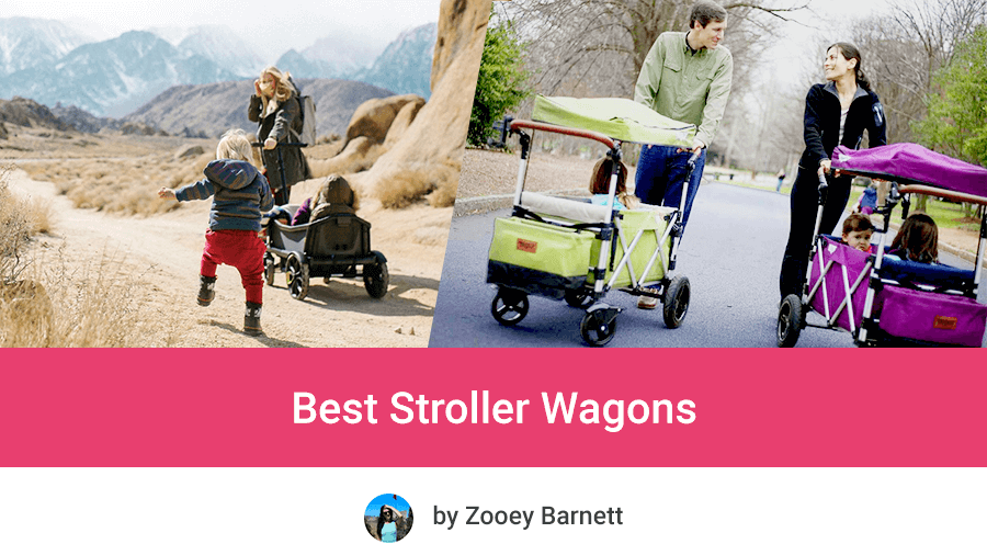 Best Stroller Wagons in 2020