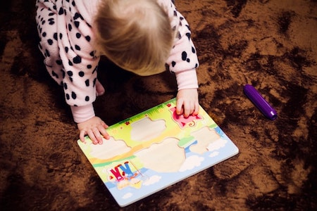 Wooden jigsaw puzzles for infants and toddlers - first jigsaw puzzles