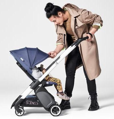 Bugaboo Ant - Fully extended canopy