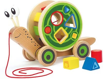 Hape Shape Sorter Wooden Pull Turtle Toy